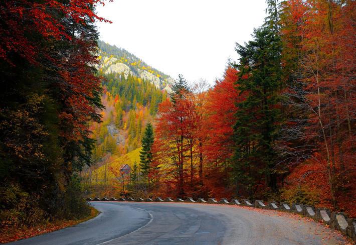 Renovar carné de conducir: Todo lo que tienes que saber sobre el cambio de neumático en otoño