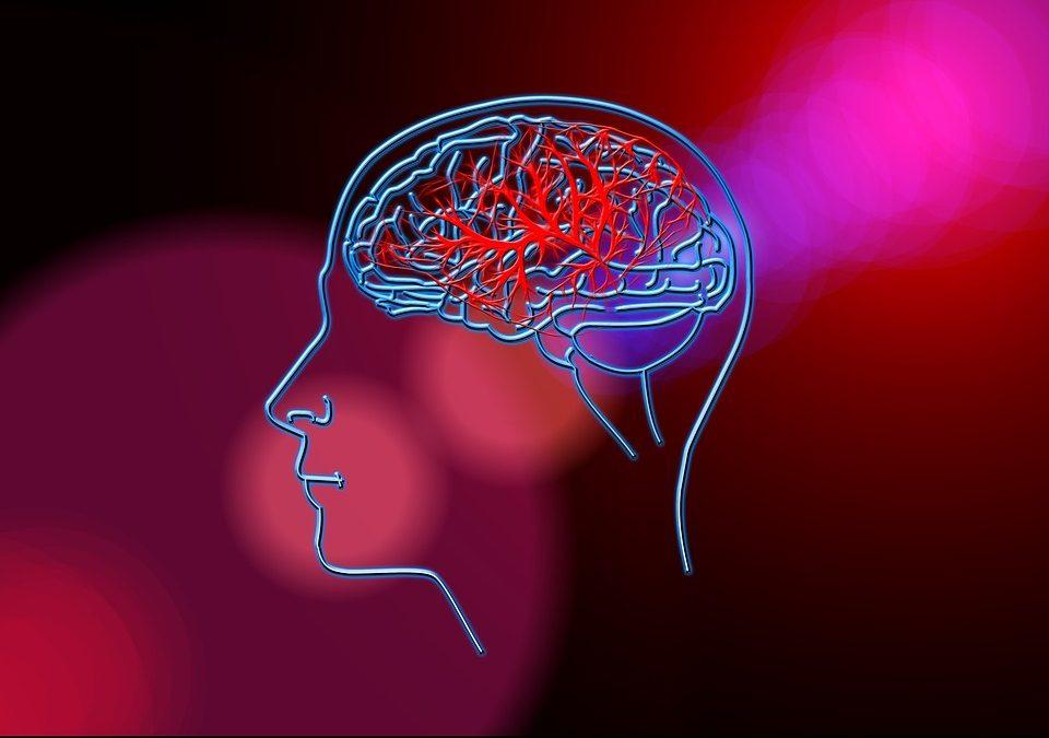 Psikoteknikoak: Iktusari aurrea hartzeko biomarkatzaileak identifikatu dituzte