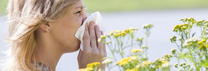 Renovar carné de conducir: Cómo afectan las alergias a la conducción