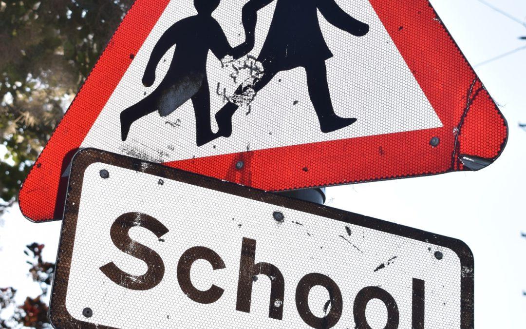 Renovar carné de conducir: 17 claves para que la educación vial sea efectiva